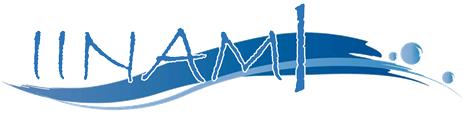 株式会社IINAMI